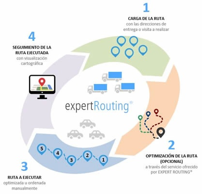expert routing