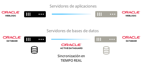 soport eentornos oracle estrategias dg