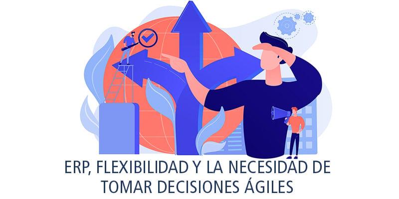 erp flexibilidad la necesidad decisiones ágiles