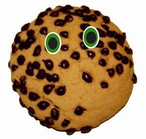 ¿Quién quiere una cookie? Que es una cookie