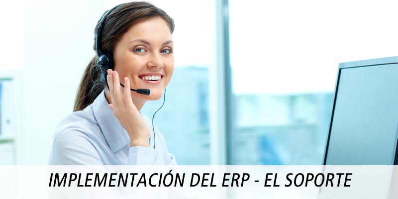 IMPLEMENTACIÓN DEL ERP - EL SOPORTE