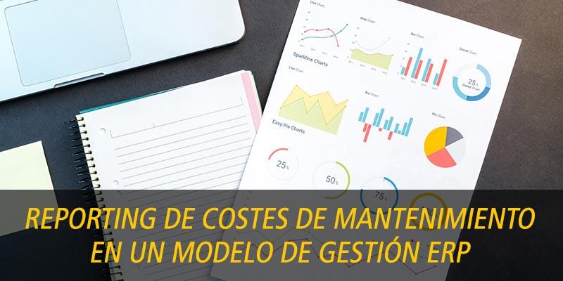 REPORTING DE COSTES DE MANTENIMIENTO EN UN MODELO DE GESTIÓN ERP