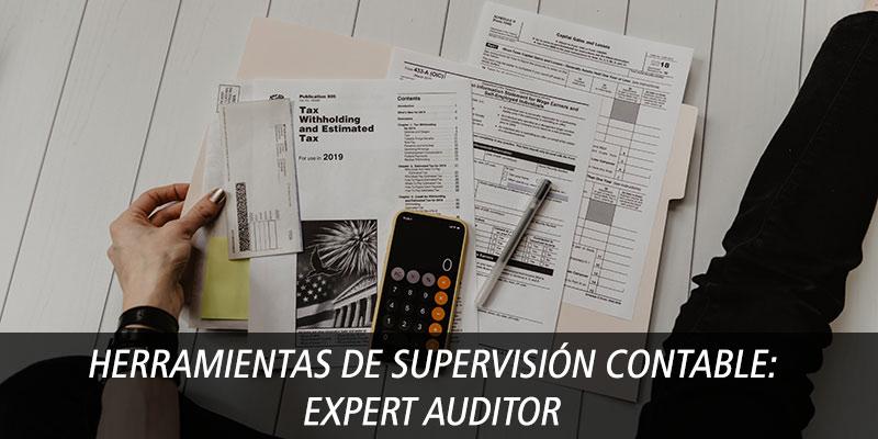 Herramientas de supervisión contable: Expert Auditor